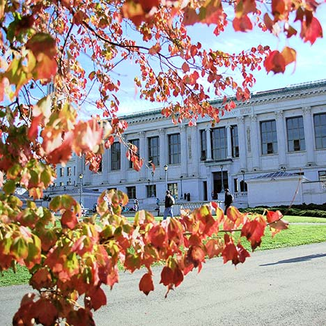 Doe library with autumn leaves. Photo by Keegan Houser.